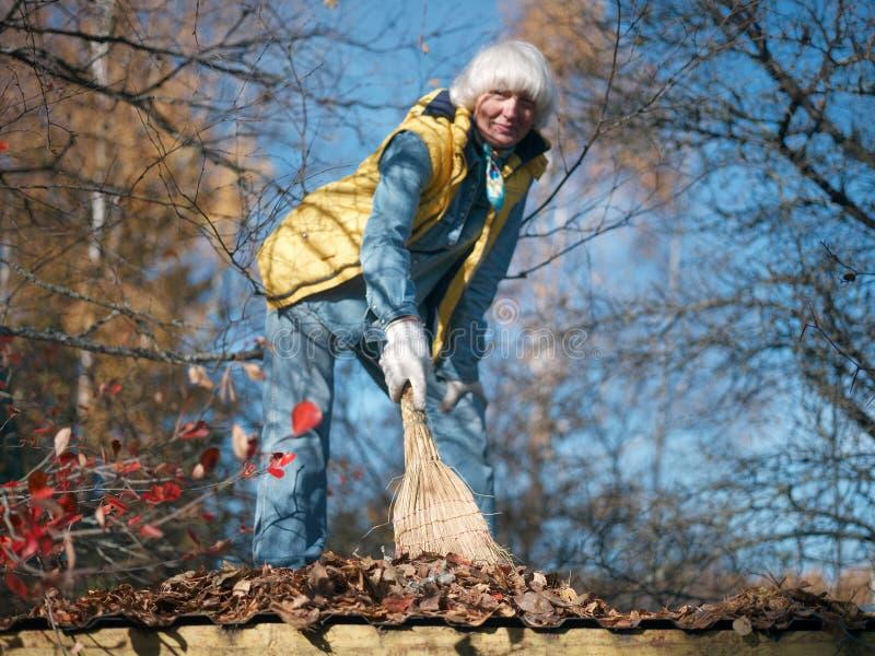 Femme enlevant les feuilles défraîchies photo libre de droits