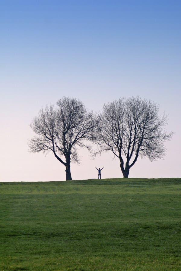 Femme et arbres photos stock