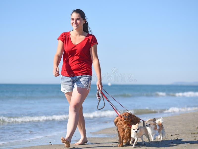 Femme et chiens sur la plage images libres de droits