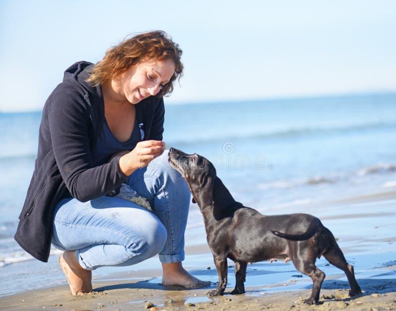 Femme et crabot sur la plage photo libre de droits