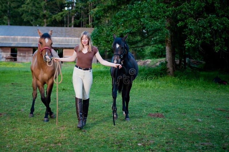 Femme et deux chevaux images libres de droits