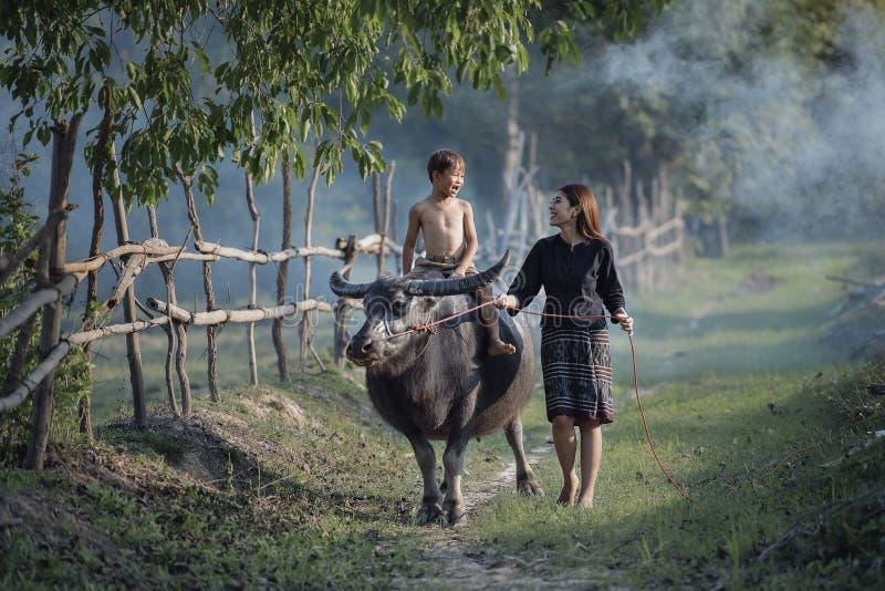 Femme et enfants avec le buffle images stock