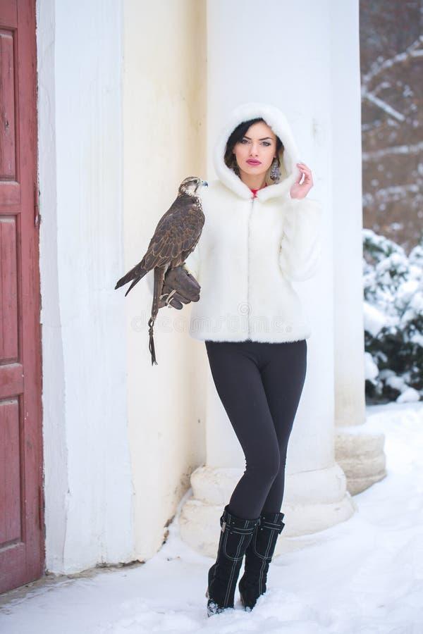 Femme et faucon en hiver photos libres de droits