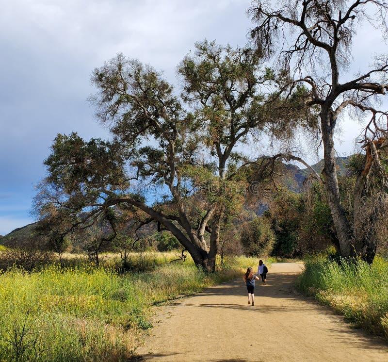 Femme et fille marchant ensemble sur une tra?n?e ou un chemin de terre dans les bois ? c?t? d'un champ jaune images libres de droits