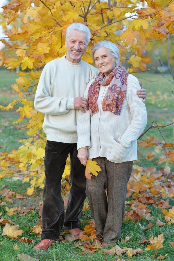 Femme et homme supérieurs heureux en parc photographie stock libre de droits