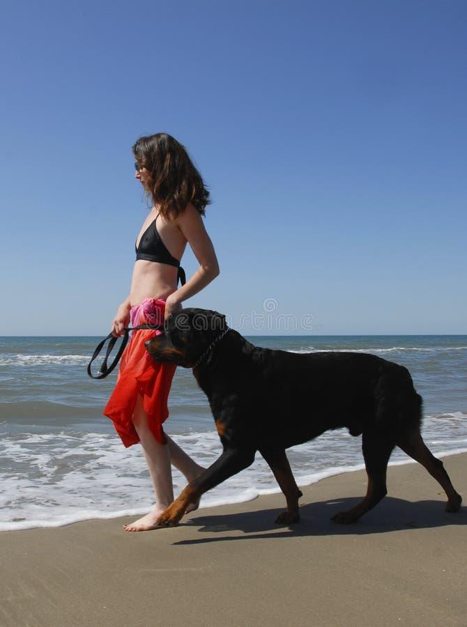 Femme et rottweiler sur la plage image stock