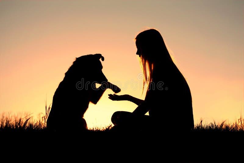 Femme et son chien se serrant la main la silhouette photographie stock libre de droits