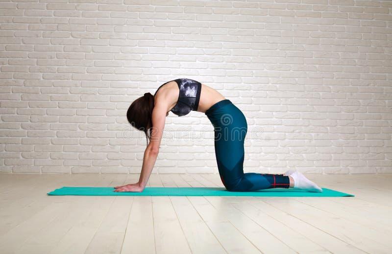 Femme faisant la forme physique étirant la séance d'entraînement d'exercices à l'intérieur dans le mode de vie sain de corps de s images stock