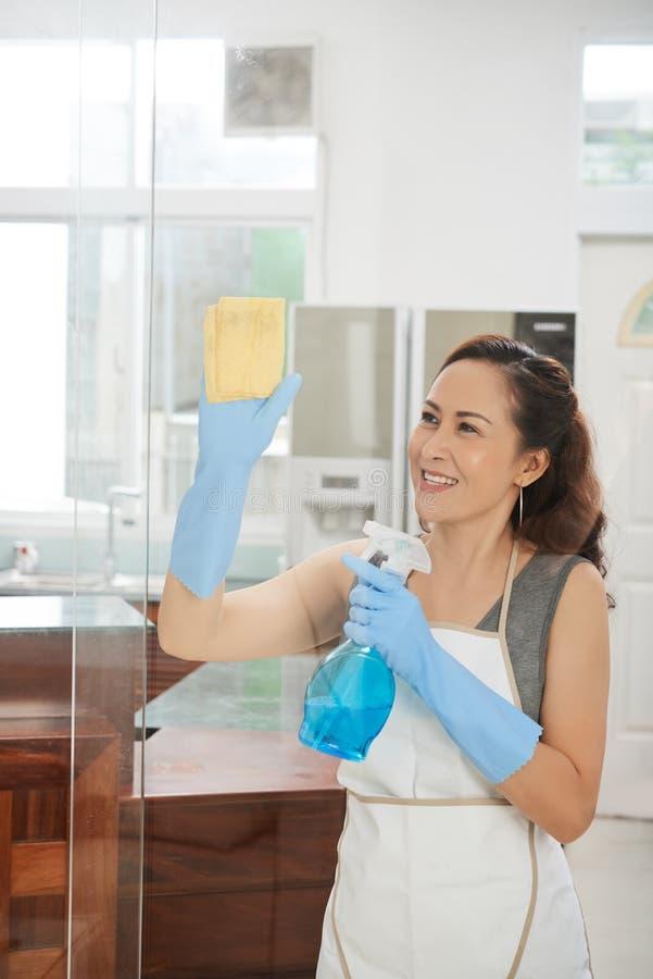 Femme faisant les travaux domestiques image libre de droits