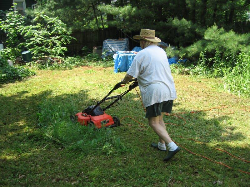 Femme fauchant la pelouse photos stock
