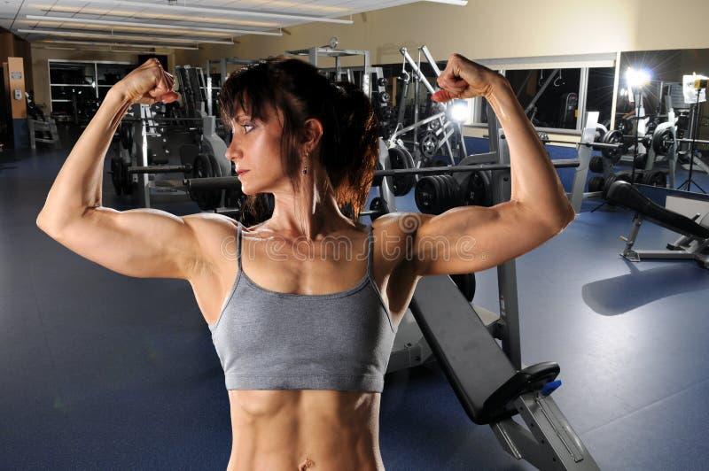 Femme fléchissant à la gymnastique images libres de droits