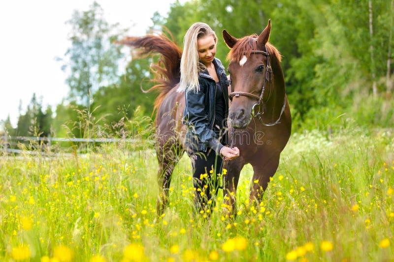 Femme heureuse alimentant son cheval Arabe avec des casse-croûte dans le domaine photo stock
