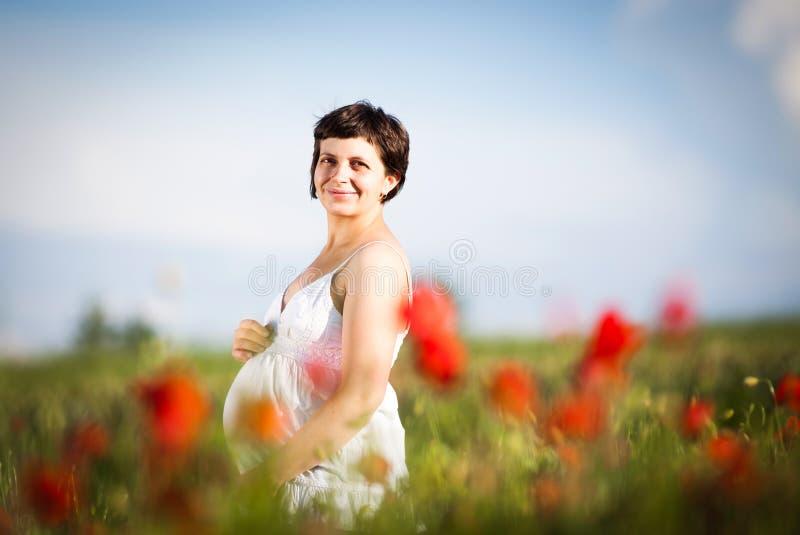 Femme heureuse enceinte dans un domaine fleurissant de pavot photo libre de droits