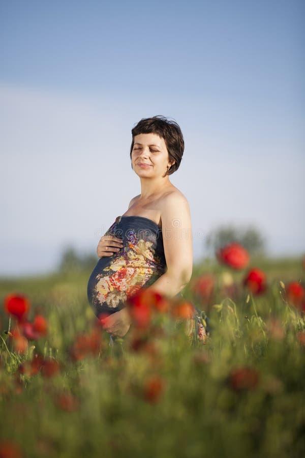 Femme heureuse enceinte dans un domaine fleurissant de pavot photo stock
