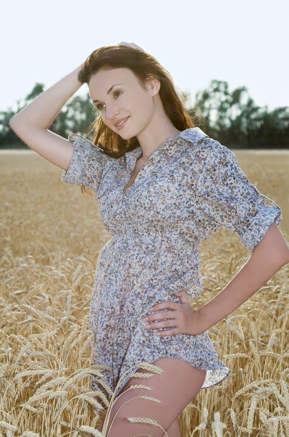 Femme heureux dans le blé d'or images stock