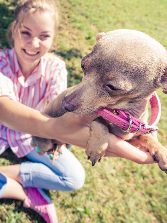 Femme jouant le chien de ratier de pinscher dehors image libre de droits