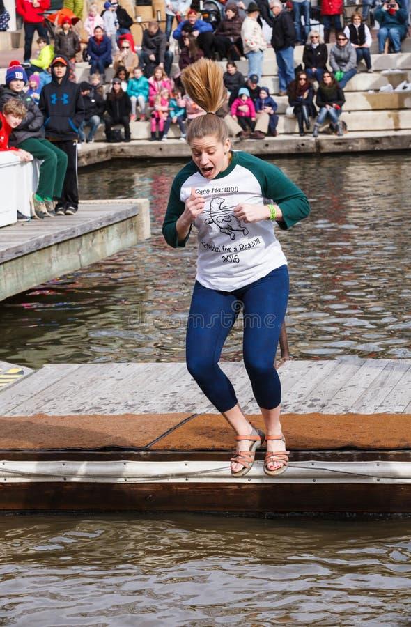 Femme Jumper Virginia Polar Dip image libre de droits