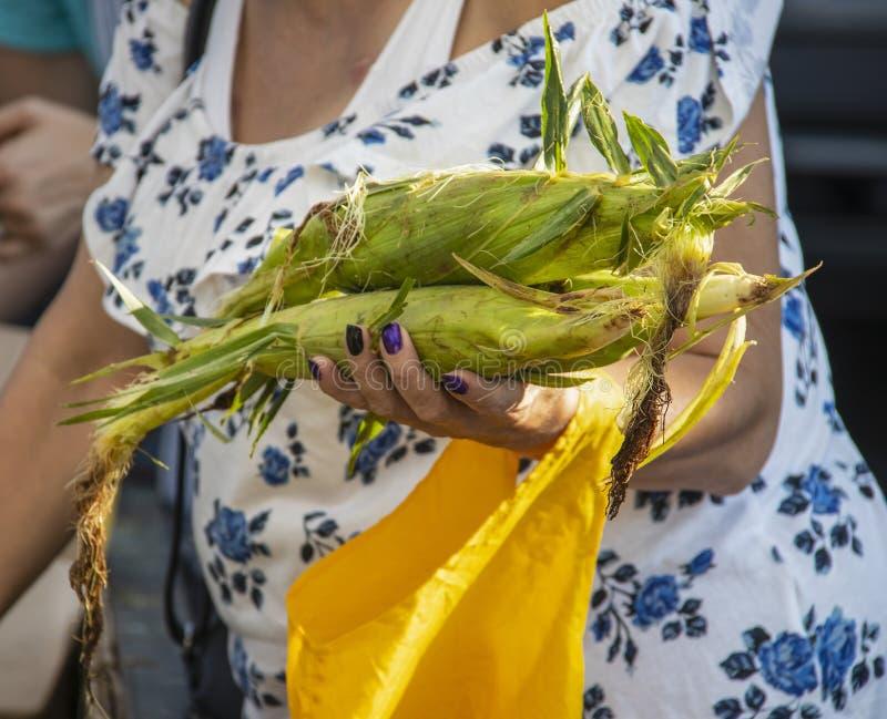 Femme méconnaissable avec le sac au-dessus des entretiens de bras au vendeur au marché d'agriculteurs avec la courge et les oigno photographie stock