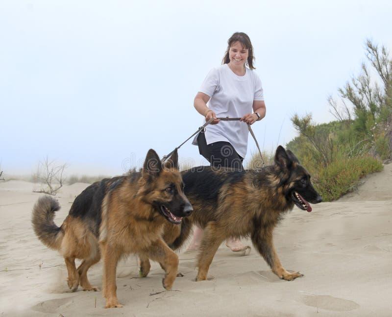 Femme marchant avec ses chiens images stock