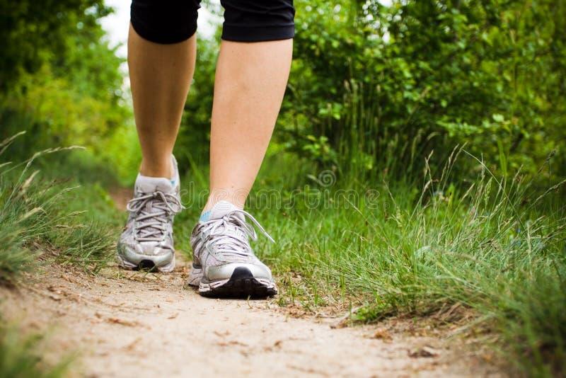 Femme marchant dans la forêt, chaussures de sport photographie stock libre de droits