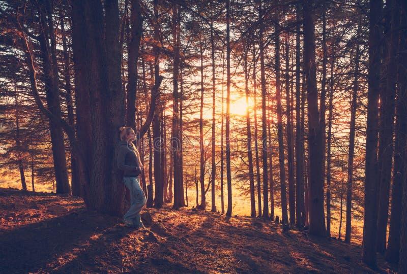 Femme marchant dans la forêt d'automne image stock