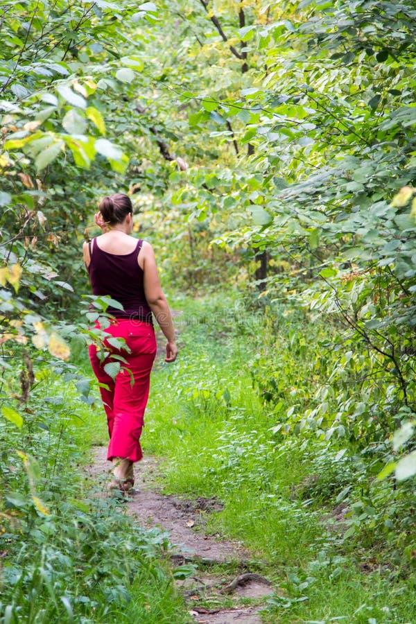 Femme marchant le long du sentier piéton dans une forêt dense images libres de droits