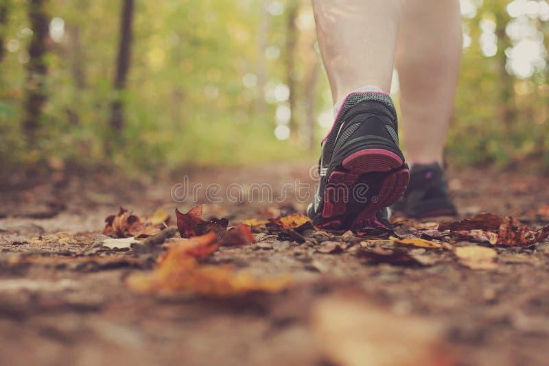 Femme marchant par la forêt. photos stock