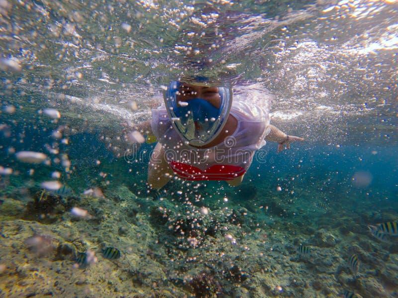Femme naviguant au schnorchel dans l'eau bleue  photo stock