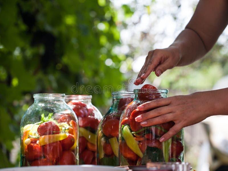 Femme pr?parant les conserves de l?gumes dans le pot en verre photo libre de droits
