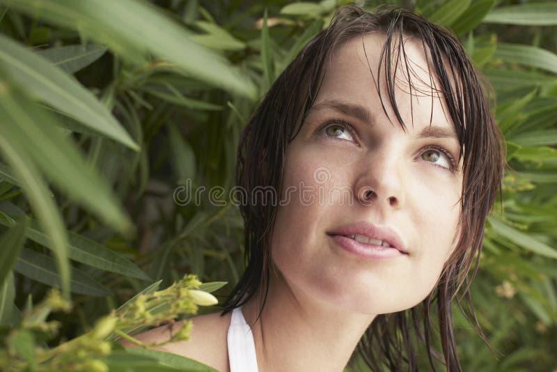 Femme regardant de l'arbuste photos libres de droits