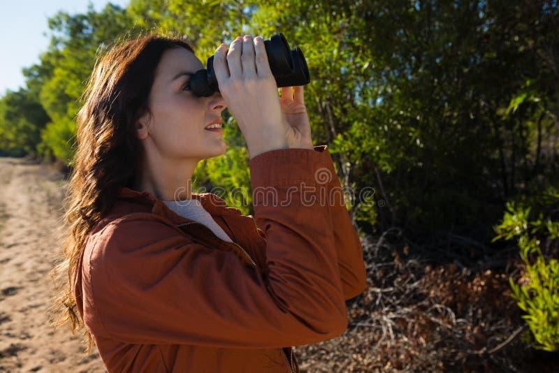Femme regardant par binoculaire par l'arbre image libre de droits