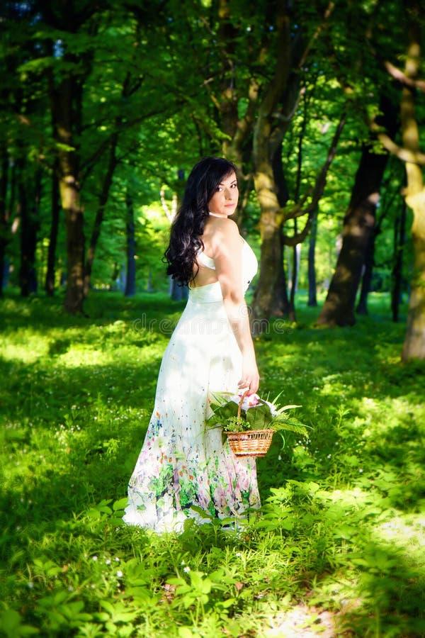 Femme romantique dans la forêt de féerie images libres de droits