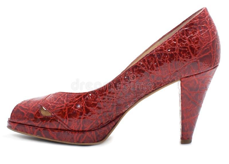 femme rouge à la mode de chaussure image stock