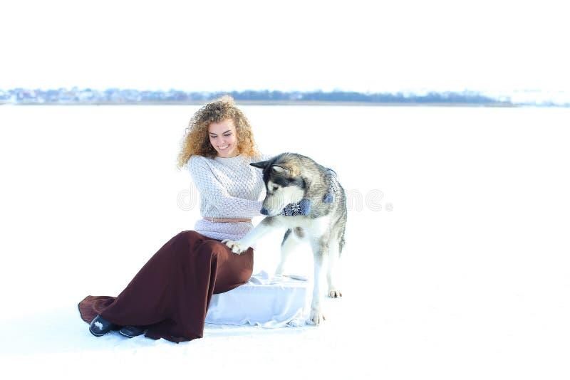 Femme s'asseyant avec le chien de traîneau à l'arrière-plan blanc de neige photo libre de droits