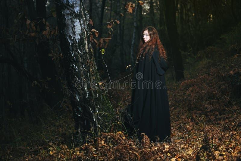 Femme sage des bois images libres de droits