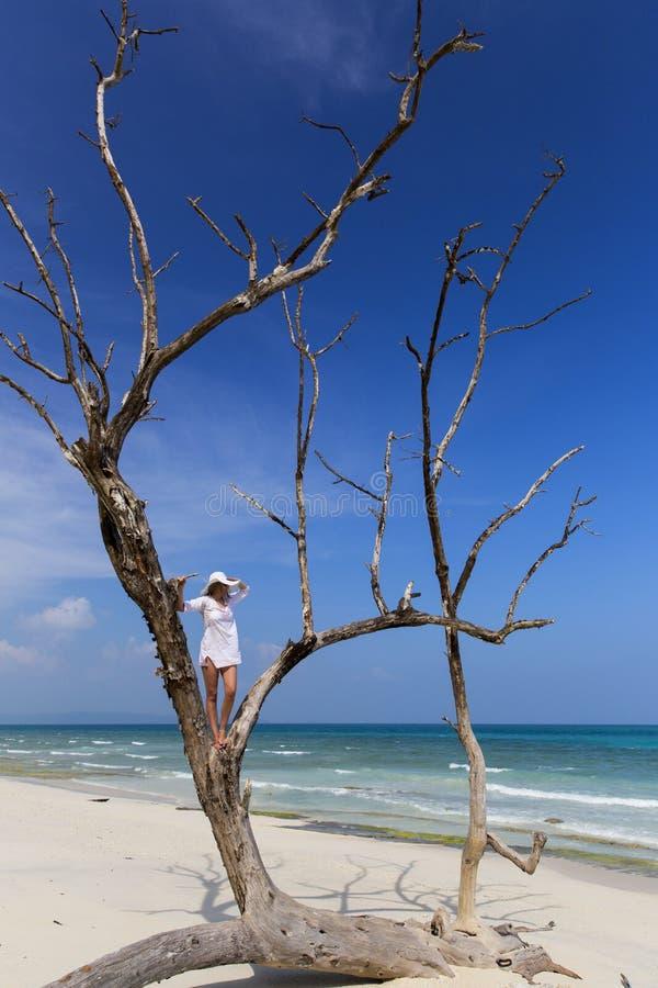 Femme se tenant dans un arbre regardant à l'océan photographie stock