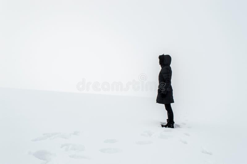 Femme se tenant dans un domaine neigeux photographie stock