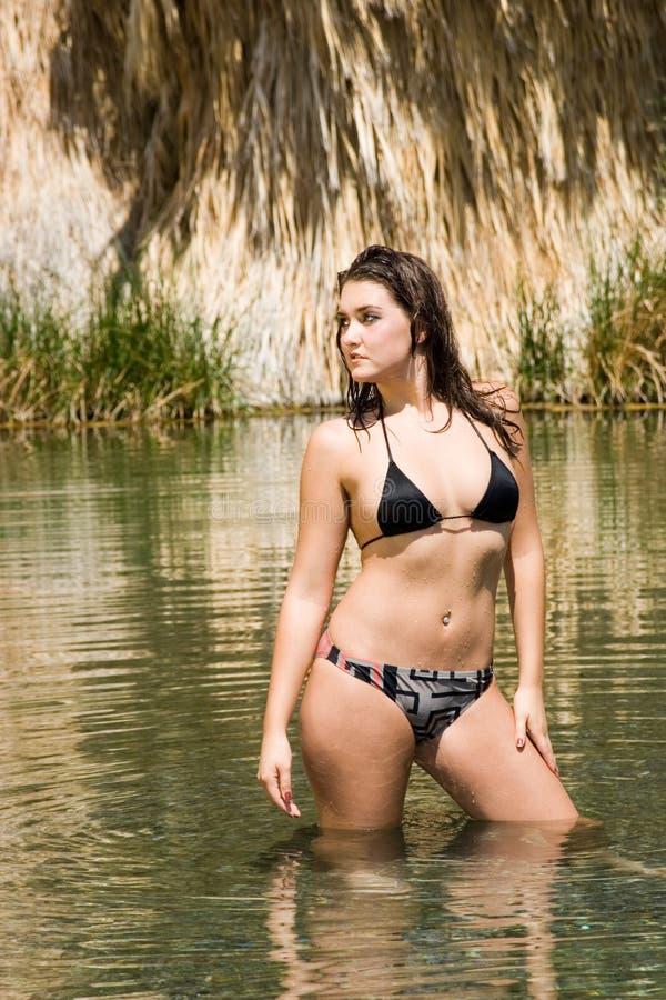 Femme sexy dans le bikini photographie stock libre de droits