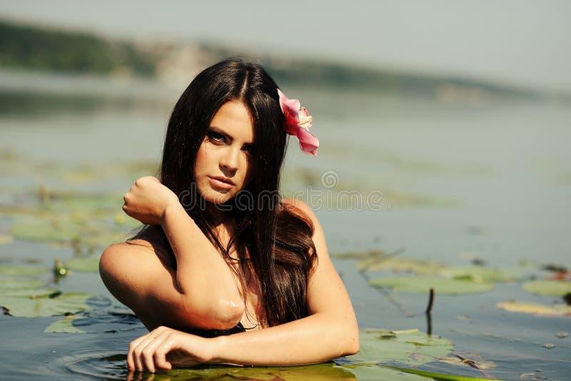 Femme sexy de brunette dans l'eau images stock