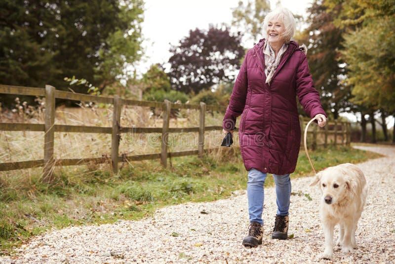 Femme supérieure active sur le chemin d'Autumn Walk With Dog On à travers la campagne image stock