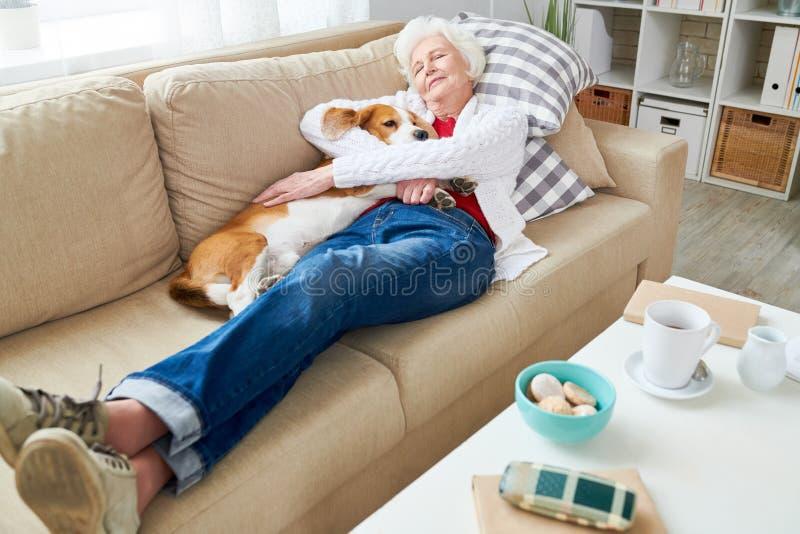 Femme supérieure appréciant le petit somme avec le chien photos libres de droits