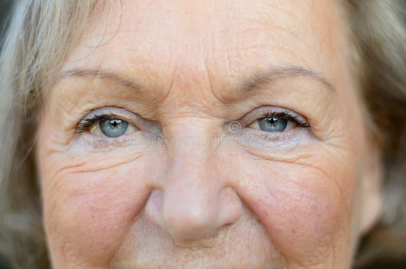 Femme supérieure attirante avec des yeux bleus photographie stock libre de droits