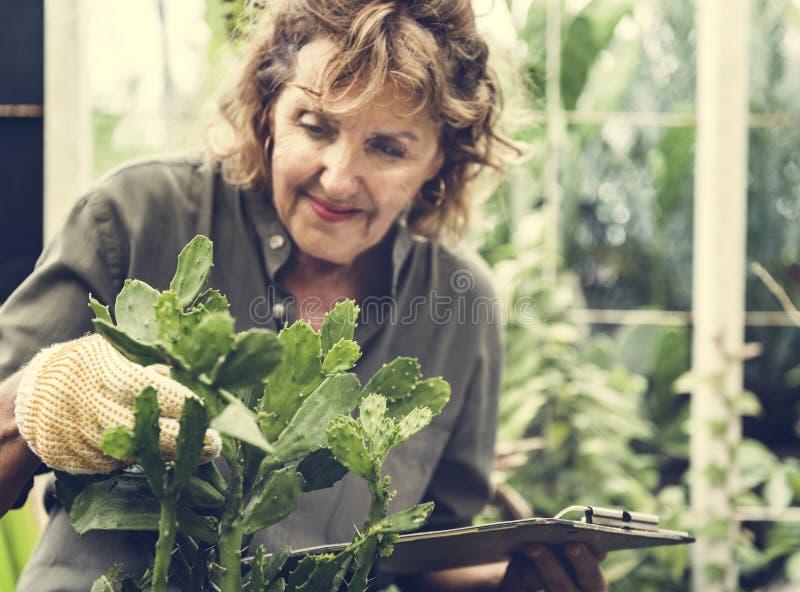 Femme supérieure avec le passe-temps de jardinage photographie stock libre de droits