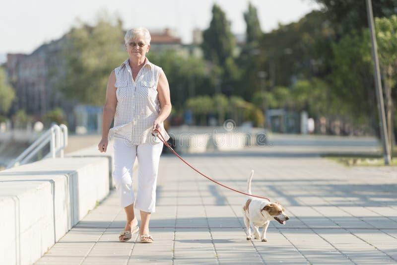 Femme supérieure et son chien photographie stock libre de droits
