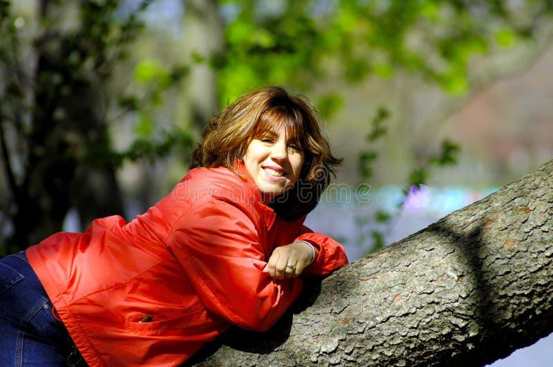 Femme sur le membre d'arbre image stock