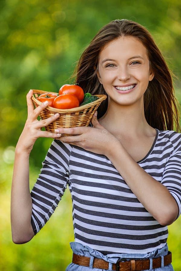 Femme tenant le panier des tomates et des concombres photos stock