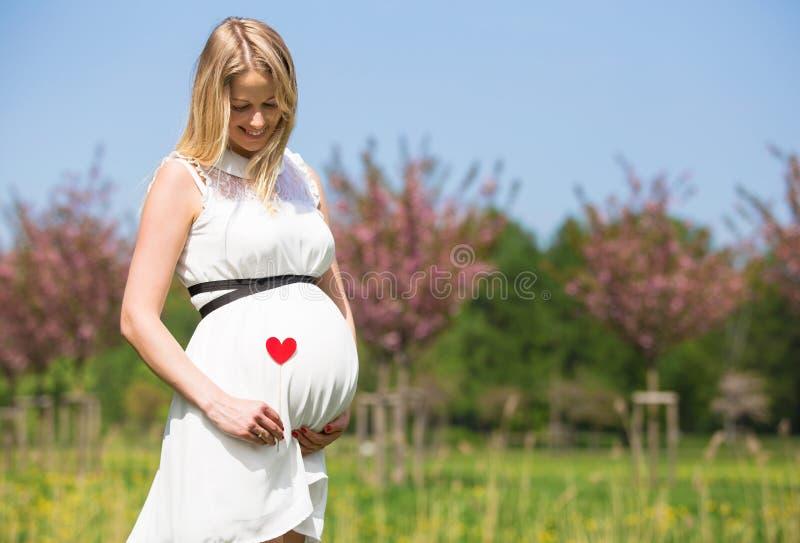 Femme tenant le signe de coeur près de son ventre photos stock
