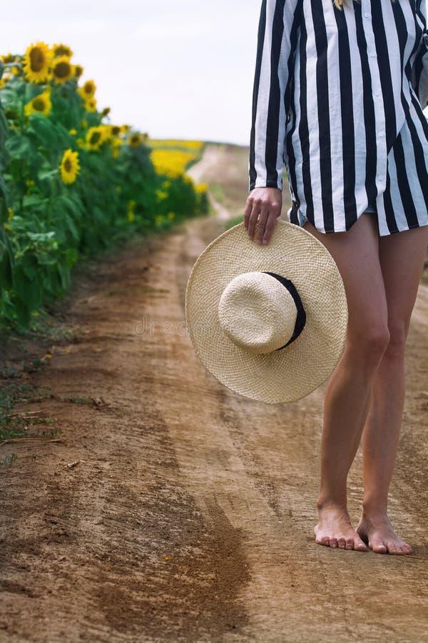 Femme tenant un chapeau en osier à côté d'un gisement de tournesol photographie stock libre de droits
