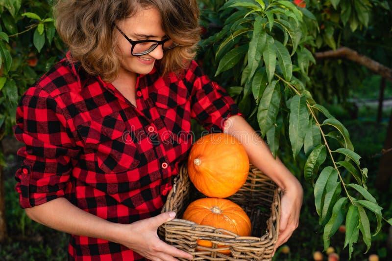 Femme tenant un panier avec les potirons oranges photos stock