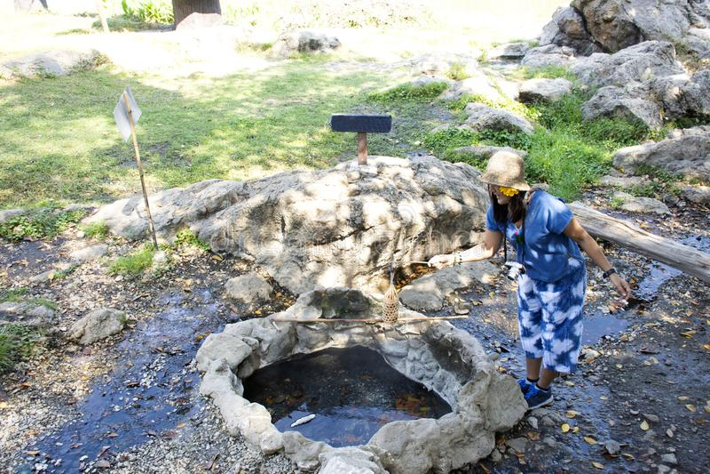 Femme thaïlandaise faisant cuire des oeufs d'ébullition en source thermale de source thermale de PA Tueng en Chiang Rai, Thaïland images libres de droits